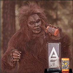 2015 Silver Addy Award - BoomBottle